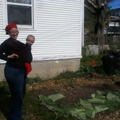 Rhubarb Leaves as Mulch and Other Tips from the Franklin Farm