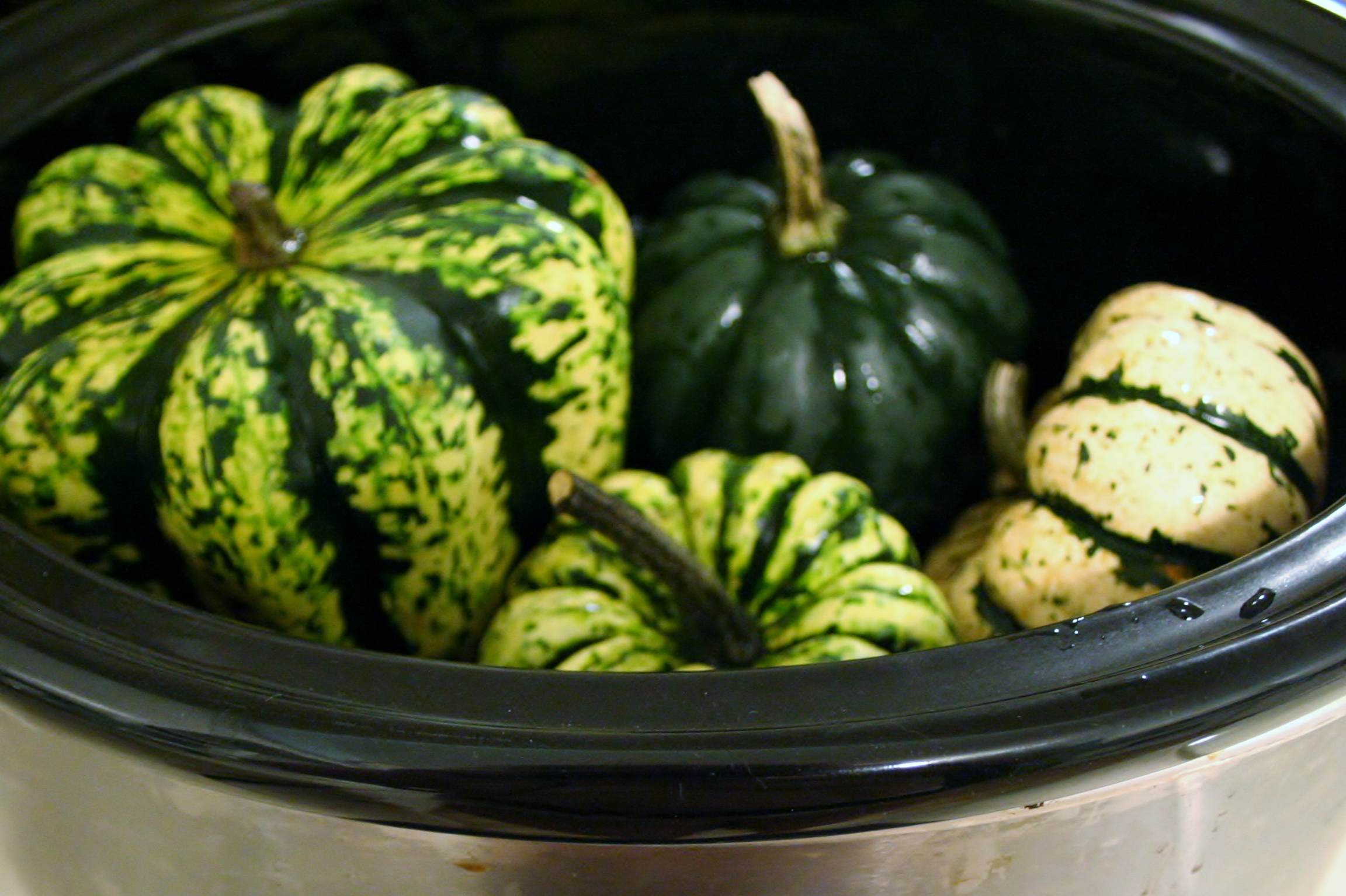 what is fuzzy squash and how to cook