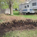 My New Front Yard Garden
