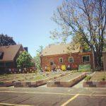 Gardening for Good + Front Yard Garden Update Video