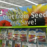 Reduce, Reuse & Recycle when Starting Seeds