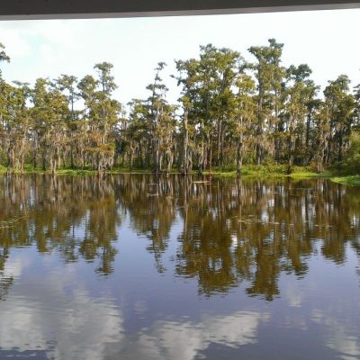 Ecojustice on the Bayou