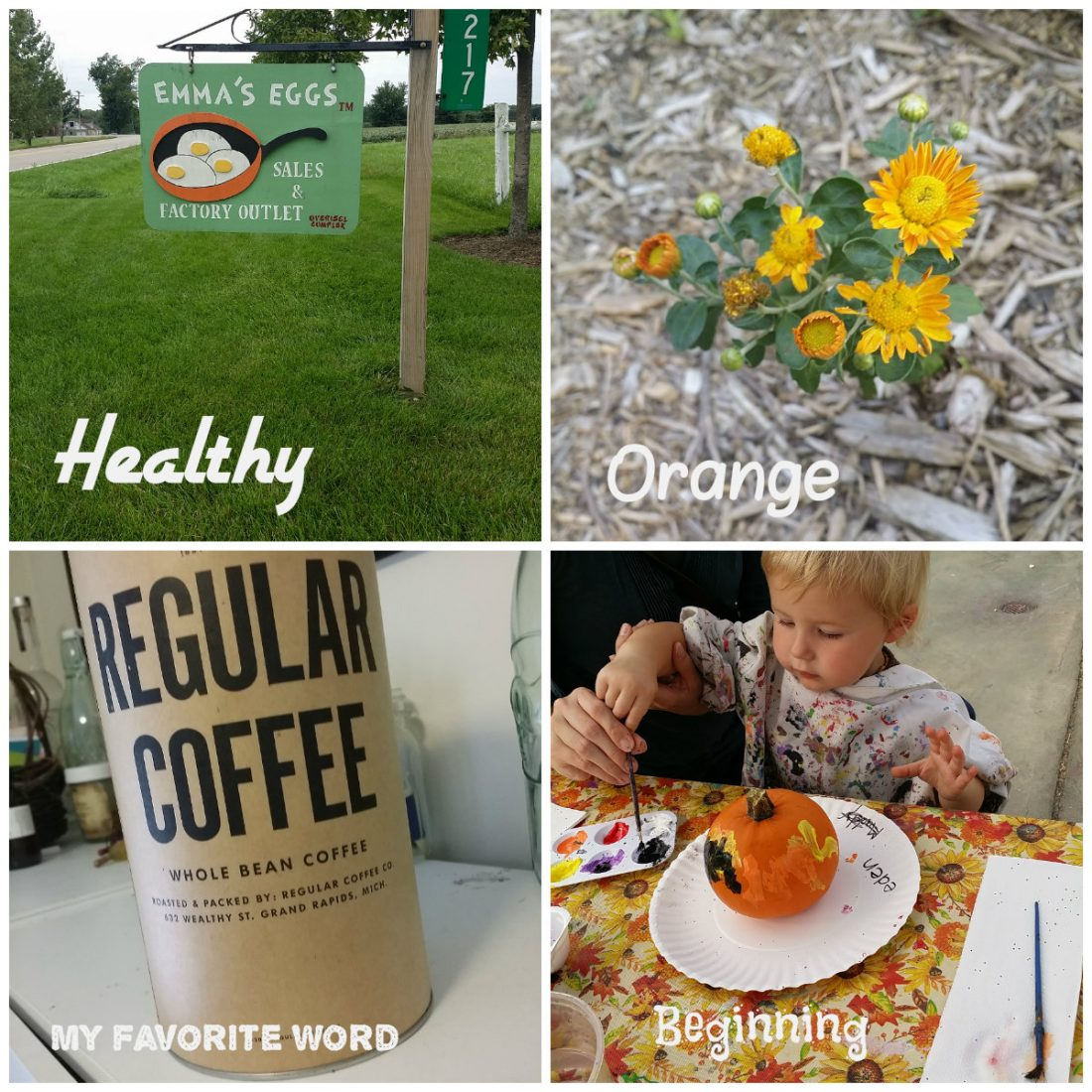 Some of my September #fmsphotoaday pics