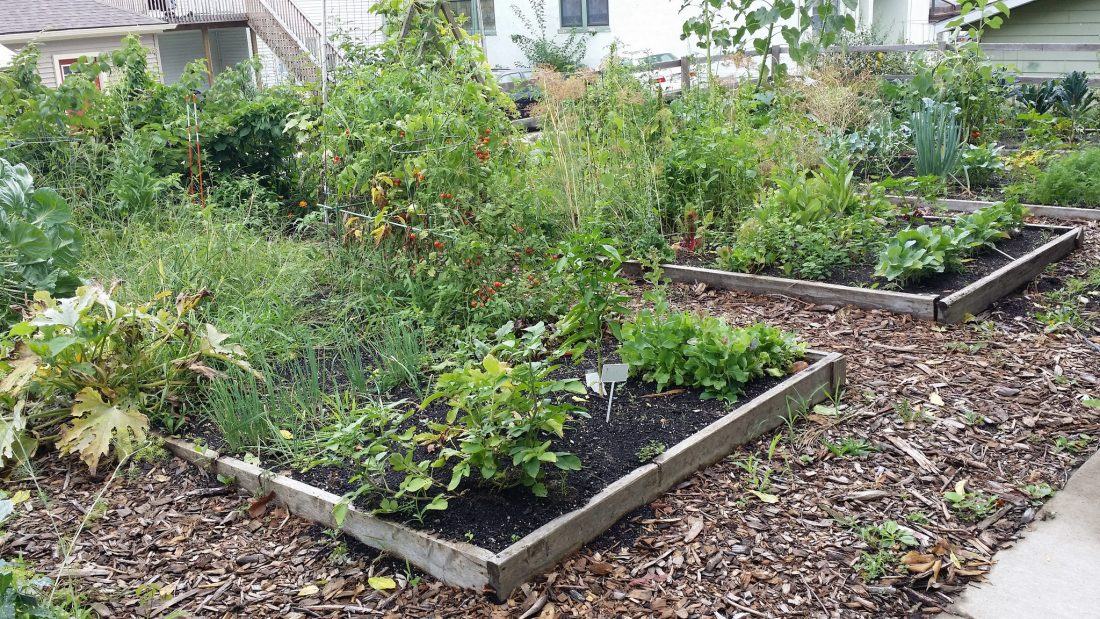 A community garden in Grand Rapids, MI