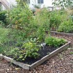 Garden for Good with Community Gardens