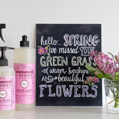 Hello Spring! {SPECIAL OFFER}
