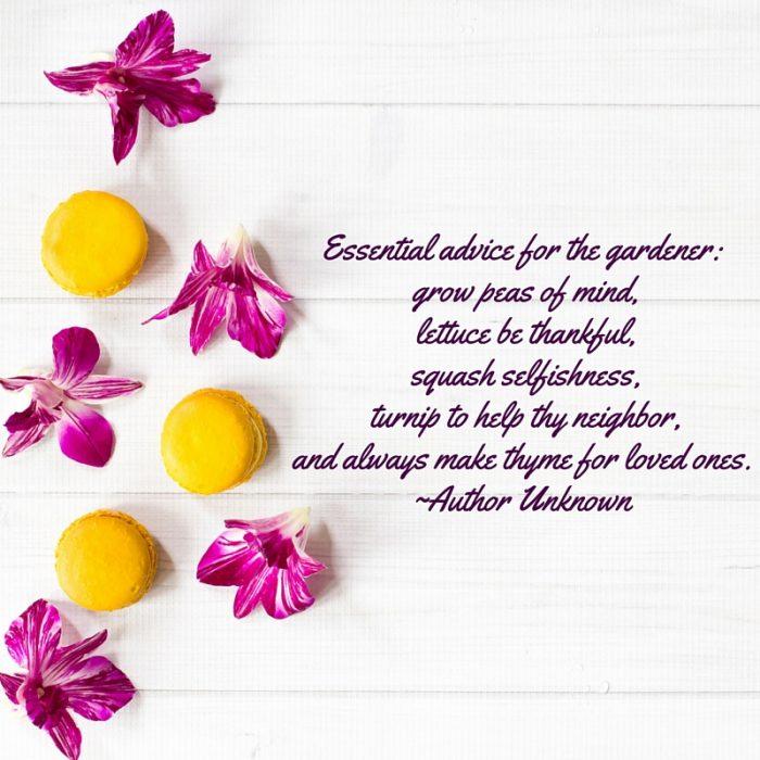 Garden-advice