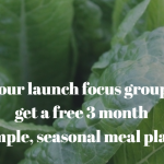 Apply to Join our Simple Seasonal Meal Plan Launch Focus Group!